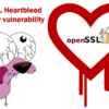OpenSSL дахь согог